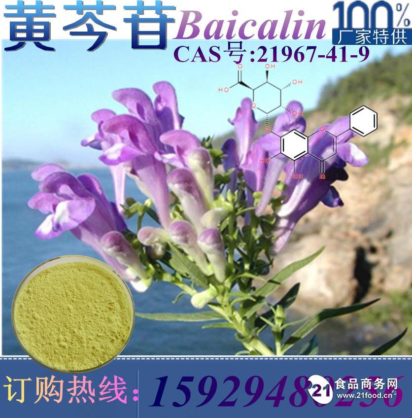 厂家直销 黄芩苷提取物 优质黄芩甙90% 黄芩苷 现货供应