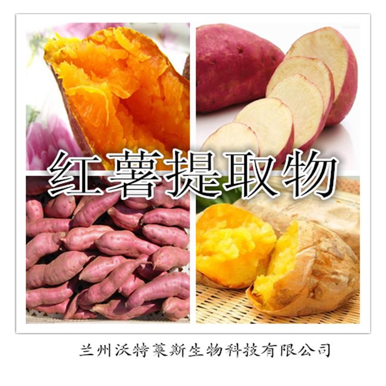 红薯提取物 比例提取 质量保证 食品原料
