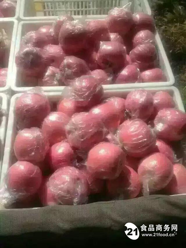 红富士苹果的营养价值