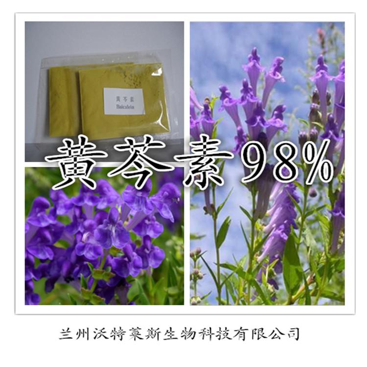 黄芩素98% 专业提取物物厂家 兰州沃特莱斯