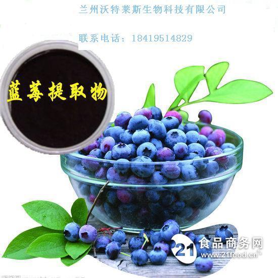 蓝莓果粉 蓝莓酵素 蓝莓花青素 蓝莓提取物 兰州沃特莱斯