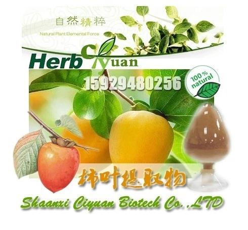现货供应柿叶提取物 柿子叶提取物 乙酸乙酯浸出物20%-90%