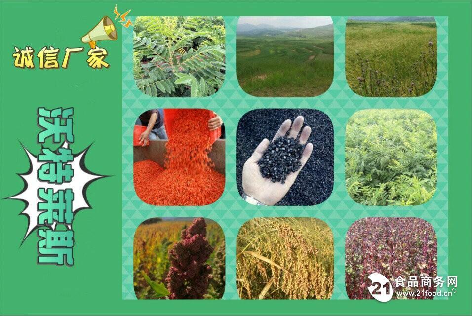 亚麻籽蛋白粉  80%含量  兰州沃特莱斯生物  包邮