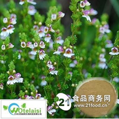 天然小米草提取物 厂家直销 品质保证