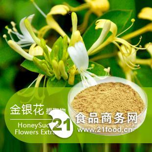 供应金银花提取物  金银花粉 绿原酸   1公斤起订  棕黄色粉末