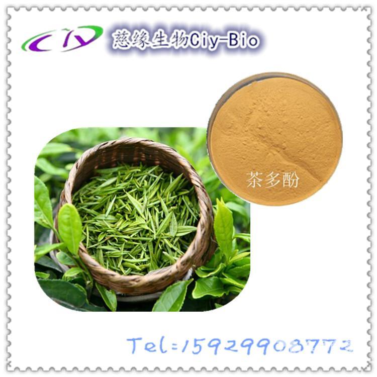 茶多酚50% 绿茶提取物
