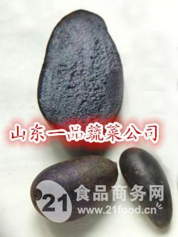 原种一代黑土豆种薯