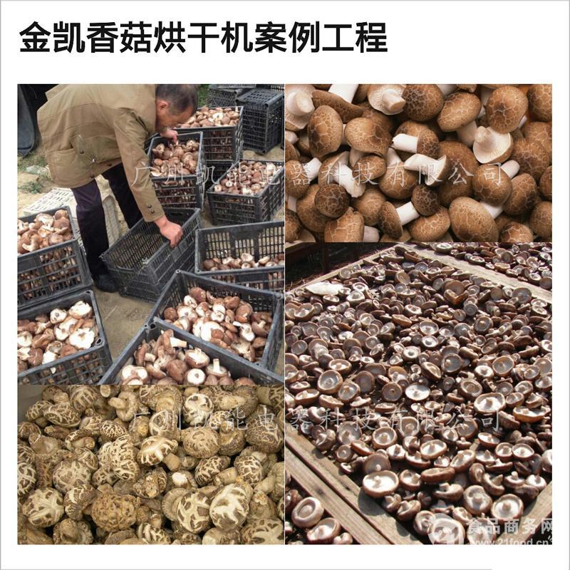 香菇烘干机厂家直销价格,三次废热回收系统