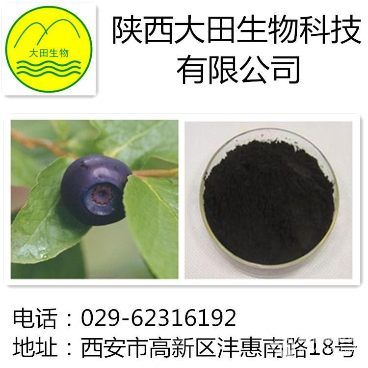 供应蓝莓提取物 植物提取物花青素 25%