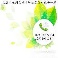 金雀花粉 染料木素98%