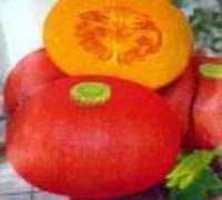 红栗南瓜种子