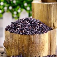 彝山香常年批发供应云南墨江紫米紫糯米血糯米原产地直供