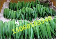 有机蔬菜黄秋葵鲜果