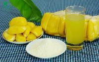 海南新鲜菠萝蜜喷雾干燥工艺纯天然水果粉