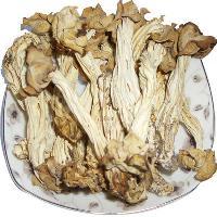 东北野生蘑菇干货阿尔山特产腐竹蘑