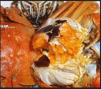 蟹黄粉 蟹肉粉包邮