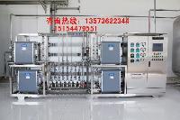 山东川一2T EDI电去离子超纯水净化过滤设备去离子净化设备