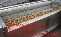 土豆毛棍去皮清洗机/萝卜清洗机/果蔬清洗机