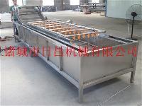 RCQX-5200鸡毛菜清洗机