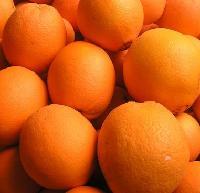 湖北秭归脐橙/纽荷尔脐橙/长虹脐橙