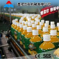 果汁饮料生产线 全自动灌装设备 饮料生产线