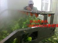 2016新型*豆芽漂烫冷却* 蔬菜蒸煮卤制线