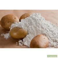 马铃薯淀粉生产厂家