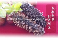 淡干海参的鉴别方法易明达海参批发