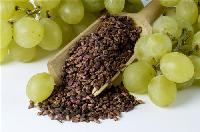 葡萄籽提取物   葡萄籽原花青素95%