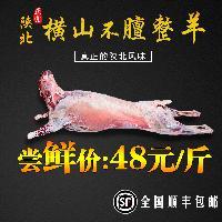 陕北羊肉榆林横山羊肉正宗羊肉无膻味带骨羊肉包装顺丰包邮送佐料