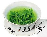 绿茶提取物 抹茶粉