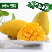 海南三亚新鲜水果小号台农5斤装