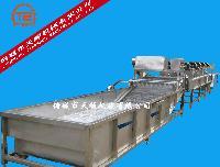 速冻玉米加工成套设备流水线(TS-6000玉米清洗漂烫线)
