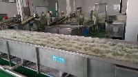 供应HB-315蔬菜配送流水线设备/净菜加工设备