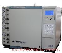 非甲烷总烃在线监测专用气相色谱仪