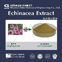 供应专业生产紫锥菊提取物