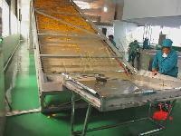 南瓜片自动带式干燥机