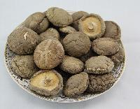 卢氏深山干香菇250-500g礼品装