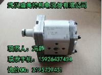 齿轮泵PFG-210-D阿托斯现货CAGA-LHN