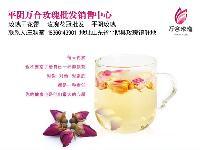 济南特产 平阴玫瑰花茶无硫玫瑰