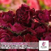 正品特级平阴干玫瑰花茶优质玫瑰茶