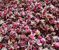 金边玫瑰花