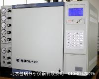 专业液化气分析气相色谱仪