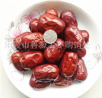 诚信新疆红枣批发厂家直销