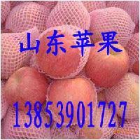 山东苹果批发苹果苹果产地