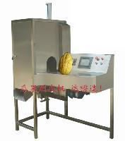 厂家供应大香橼削皮机香橼加工设备