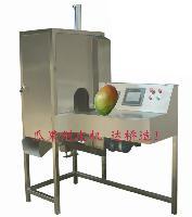 厂家供应大芒果削皮机芒果加工设备