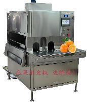 厂家供应橙子削皮机 橙子去皮机 橙汁加工设备