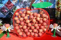 天山玉  艺术苹果(个性化定制)