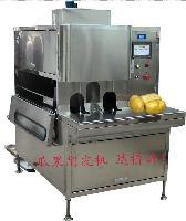 厂家供应马铃薯削皮机 土豆加工设备